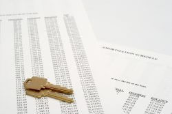 Amortization Schedule   Learn More